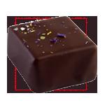 Praline chocolat louise