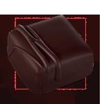 Praline chocolat pecan